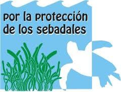 Informa sobre los impactos ambientales en el litoral canario.