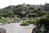 Acuerdo entre Cabildo y Corea para replicar el Jardín Canario