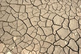Canarias,en riesgo severo de desertificación