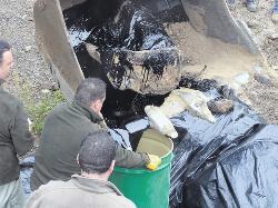 La Guardia Civil precinta la Cantera de San Lorenzo