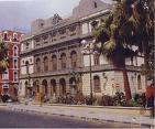 Once de las palmeras canarias que se sacaron de El Lasso ya lucen en el entorno del Teatro
