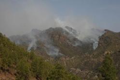 Un jurado popular podría juzgar el caso del vigilante forestal de Gran Canaria