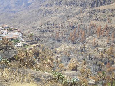 ZONA QUEMADA EN  FATAGA, SAN BARTOLOME DE TIRAJANA