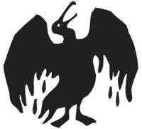 Nace una asociación en Gran Canaria para defender las Aves