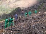 Diversas instituciones canarias trabajan por regenerar el sur de Gran Canaria