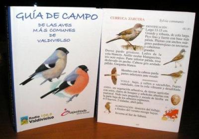 LIBRO  GUIA DE CAMPO DE LAS AVES MAS COMUNES DE VALDIVIELSO
