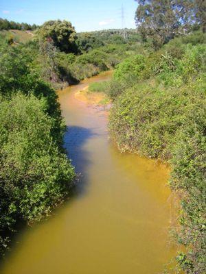 Denuncian diferentes focos de contaminación en las minas de Aznalcóllar