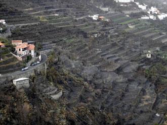 Cándido Padrón realiza su tercera visita a las zonas quemadas por los últimos incendios en La Gomera
