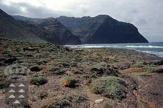 El Gobierno de Canarias amplía el tiempo de tramitación de los planes de siete espacios protegidos