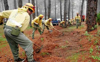El servicio contra incendios ha sofocado 35 conatos este año
