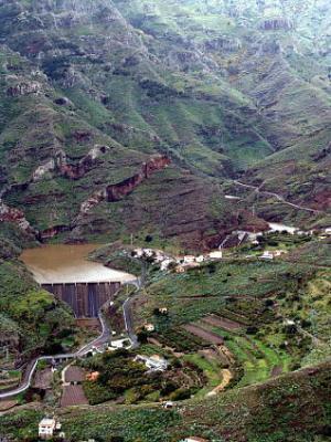 Ayudas para reforestar tierras no agrícolas