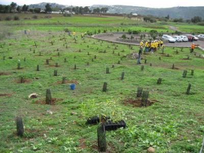 FORESTA TRABAJA CON BOEHRINGER INGELHEIM EN BENEFICIO DEL MEDIO AMBIENTE EN GRAN CANARIA