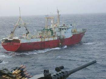 Denuncian la ocultación de un Informe científico sobre la pesca en Canarias