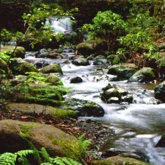 Canarias asume la gestión de sus parques nacionales con más de 16 millones