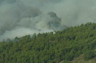 Un incendio descontrolado en La Palma obliga a evacuar a dos mil personas