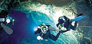 Un tubo volcánico que nace en Haría alberga una biodiversidad poco conocida