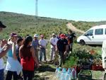 Un total de 6.000 niños plantan 8.000 árboles dentro del Plan Escolar Forestal de Gran Canaria