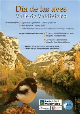 Valle de Valdivielso: Dia Mundial de las Aves