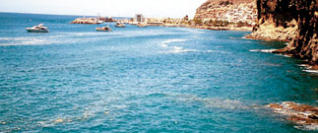 La situación de Gran Canaria preocupa a Greenpeace