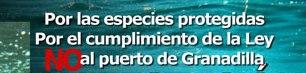 El Tribunal Superior de Justicia de Canarias ha dictado una providencia por la que mantiene la suspensión cautelar de las obras en el puerto de Granadilla de Abona