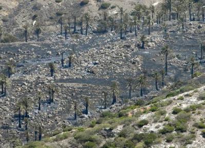 El incendio de Vallehermoso ya ha quemado 90 hectáreas