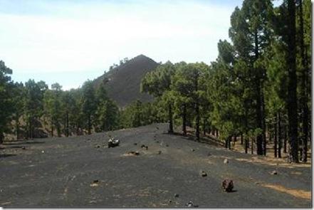 Inaugurado en La Palma el primer sendero autoguiado de Canarias