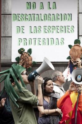 Bruselas abre una investigación a Canarias por el catálogo