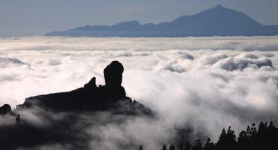 Detenidos por colocar cebos envenenados en reserva biosfera de Gran Canaria