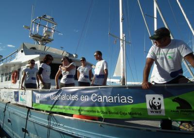 Jornada divulgativa: Acércate al mundo del Cachalote, 7 abril