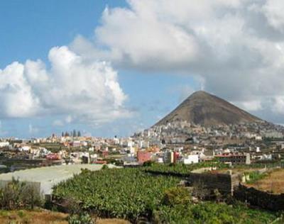 Los ecologistas consideran indignantes la construcción de una carretera en La Vega de Gáldar