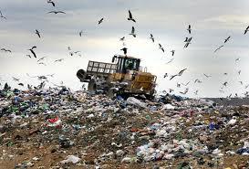 Los números de la basura en España