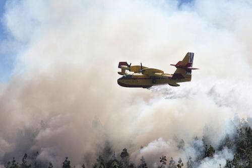 El 1-1-2 Canarias participa en un simulacro de incendio forestal