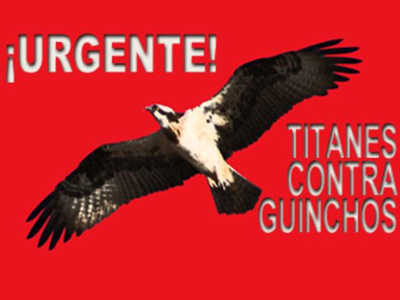 Denuncian las afecciones de Furia de Titanes II al águila pescadora
