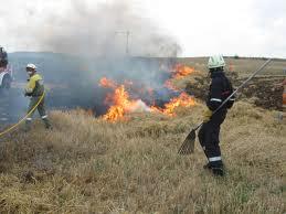 Unos 700 efectivos en 36 bases en toda España, en guardia para ayudar a las CC.AA. en la lucha contra el fuego