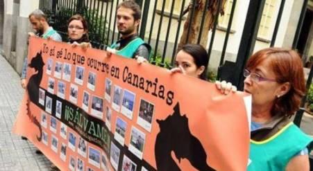 El colectivo Ben Magec anuncia que habrá protestas masivas si el PSOE no cambia el catálogo de especies protegidas de Canarias