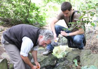 La Asociación El Cloquido captura los ruidos y rumores del Jardín Canario